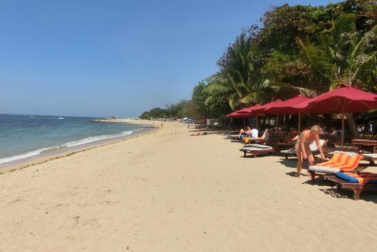 Beach Life - 27214