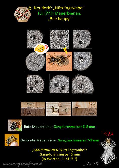 Honey Bee wirklich - 46478