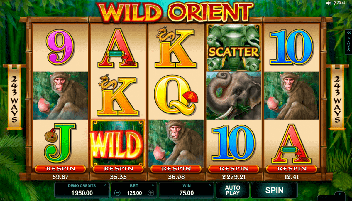 Casino 20 Freirunden - 29221