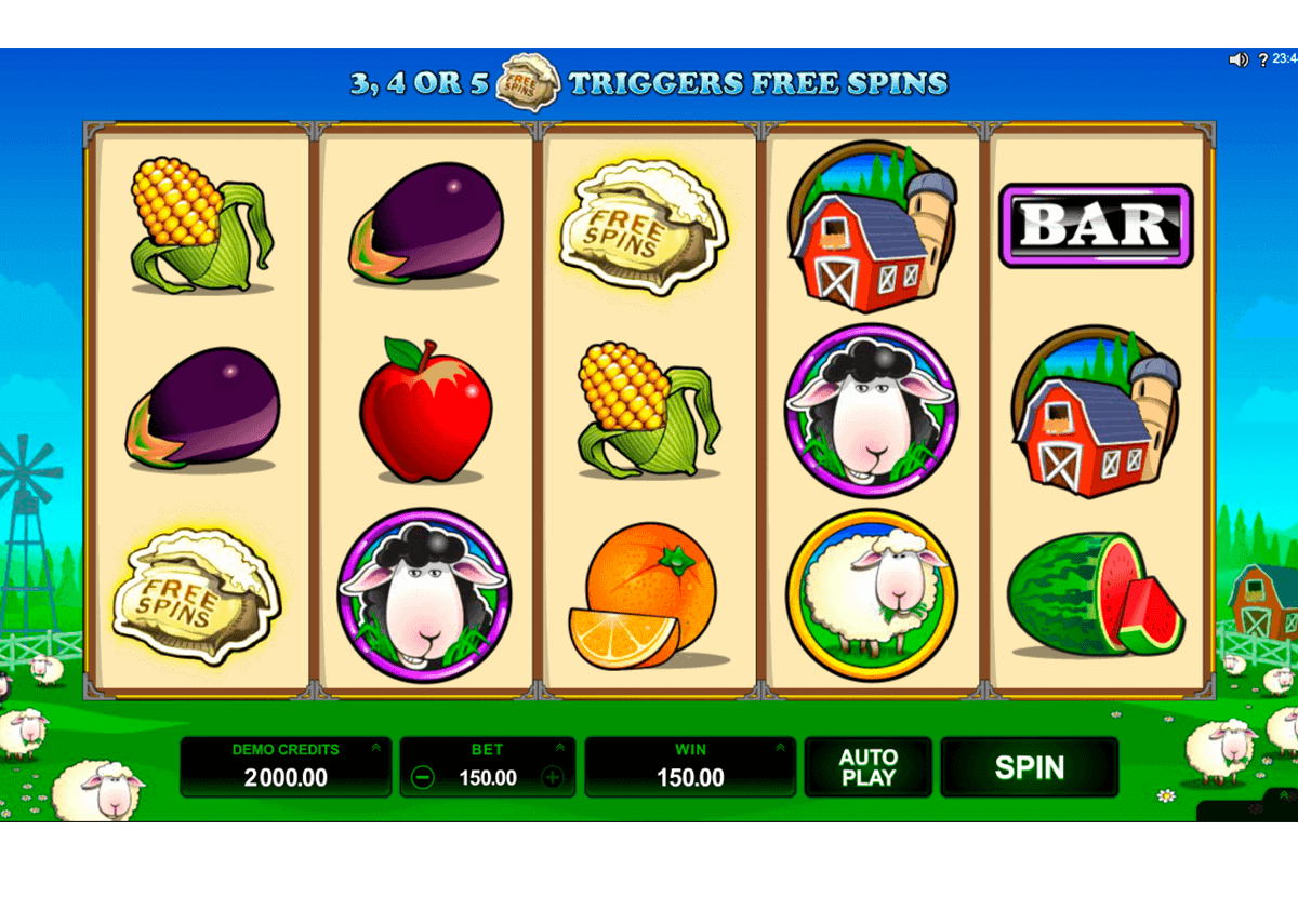 Slots Bonus - 13033