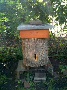 Honey Bee wirklich - 34070