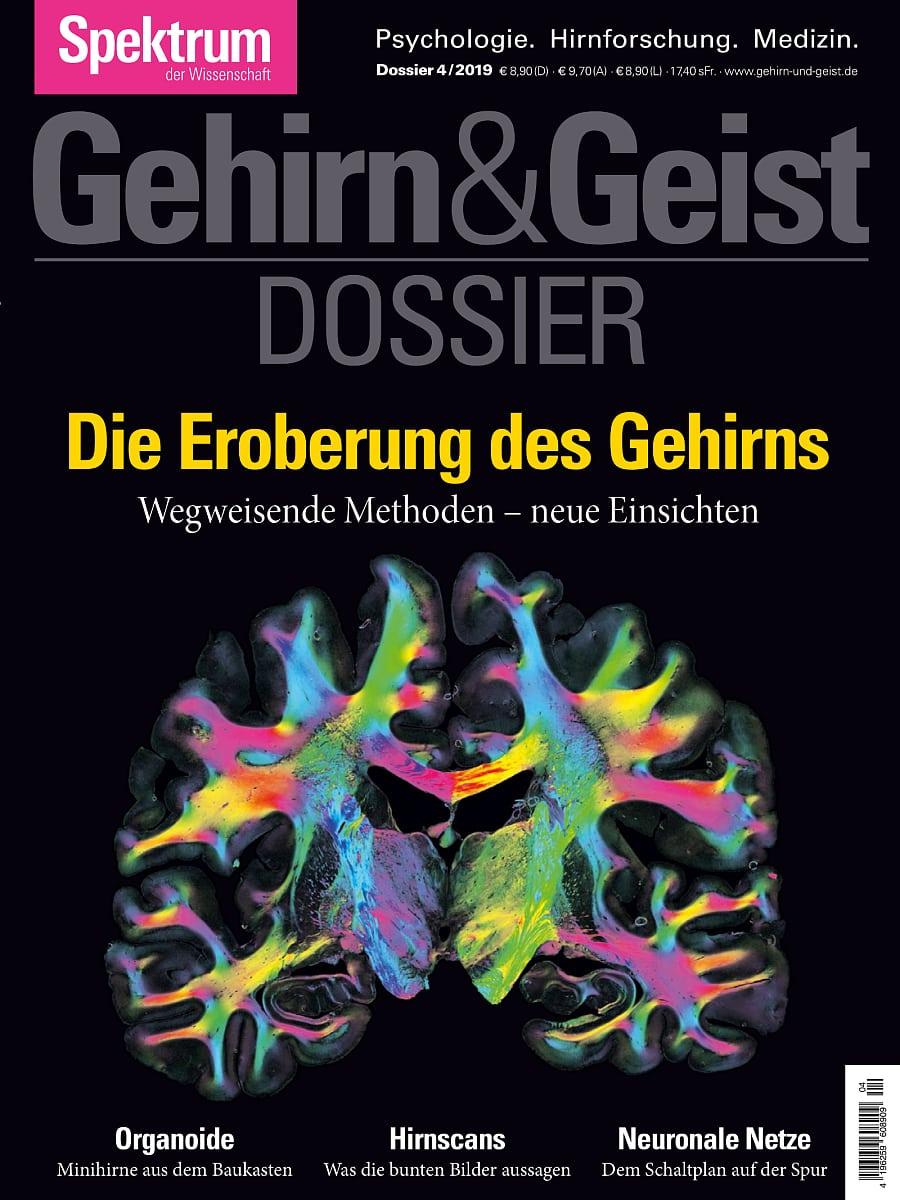 Neuronale Netze Casino - 66825