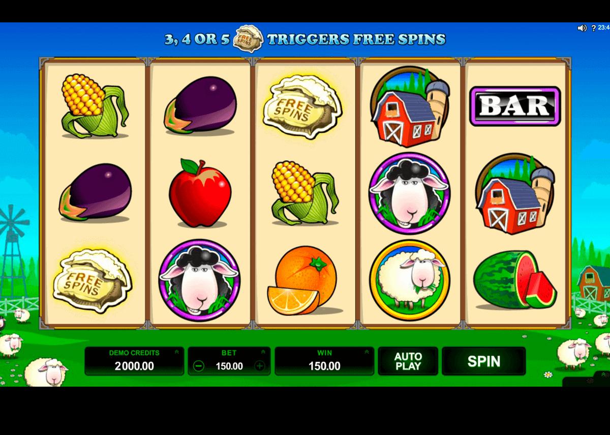 Slot Machine - 24917